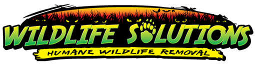 Wildlife Solutions Humane Wildlife Removal Logo